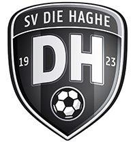 https://www.svdiehaghe.nl/