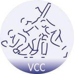 VCC_cricket